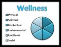 wellness-300x232