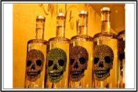 bottles with skulls